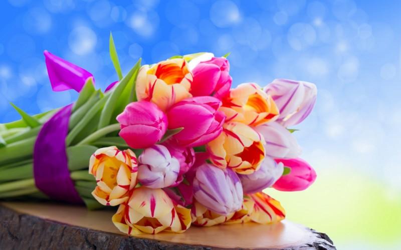 Tulips-flowers-34015251-1440-900